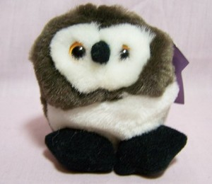 Olley Owl Magnet