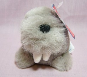 Whiskers Walrus Magnet