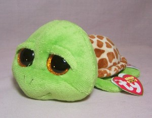 Zippy the Green Turtle Small Boo